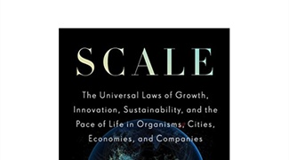 The Underlying Laws Binding Cities, Companies, and Living Systems