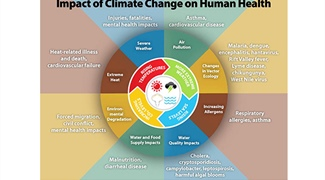Forecasting and Modeling Techniques to Study Climate's Impact on Public Health