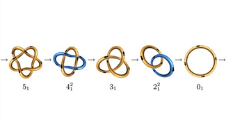 Untangling DNA with Knot Theory
