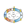 Temporal Clustering in Cell Cycle Dynamics