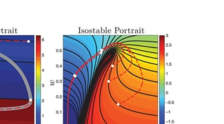 Better Living through Phase and Isostable Reduction