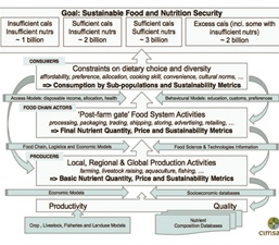 Is There a Role for Mathematics in Food Security?